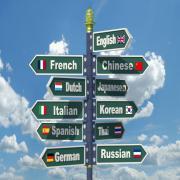 המרכז למצוינות אקדמית בשפות